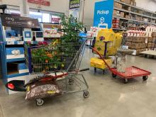 Shopping cart full of donated lowers, plants, and mulch inside of the local Lowe's store checkout line. Shelves behind cart with garden department items. Buggy with yellow jugs and red cart with bird feeder.