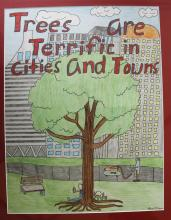 Ann Gibbons Winning Arbor DayPoster 2018 - Trees are Terrific in Cities and Towns