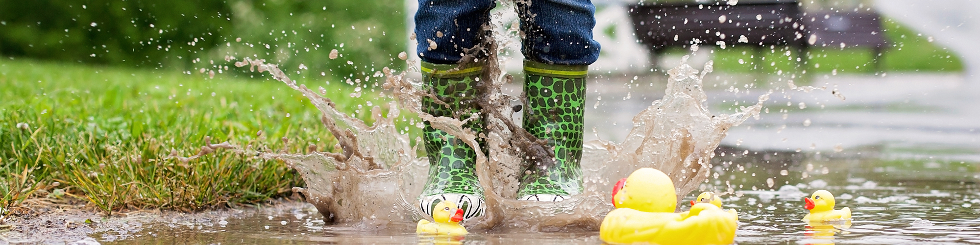 Feet with galoshes jumping into a puddle with rubber ducks floating in water